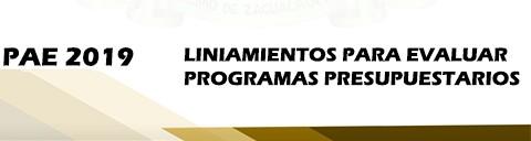 lineamientos para evaluar programas