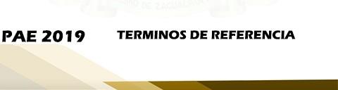terminos de referencia 2019