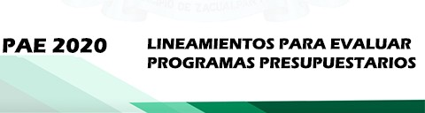 lineamientos para evaluar programa